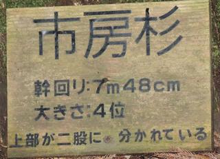 DSCN0844.jpg